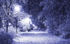 snow-fall-park-1920x1200